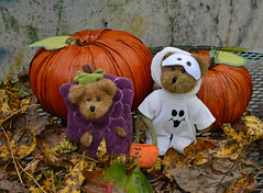 Trick or Treat! (BKHagar *Kim*) Tags: bkhagar halloween costume ghost grapes bear bears teddy teddybear fall autumn htbt happyhalloween happyteddybeartuesday pumpkin pumpkins charlie wilby boydsbears