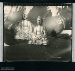 Ascend levitate. (FMCRphotography) Tags: roid week polaroidweek roidweek2018 roidweek spectra 1200si budha