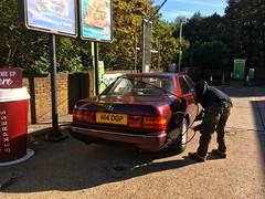 1991 Lexus LS400 V8 4Litre (mangopulp2008) Tags: 1991 lexus ls400 v8 4litre