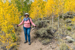 Entering the grove (palbion) Tags: majellaalbion blossomsfoliage twinlakes colorado unitedstates us