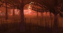 Rock of Cashel (4) (Osiris LeShelle) Tags: secondlife second life sl connoissseur magazine september issue rock cashel riding sim osiris leshelle review forest landscape