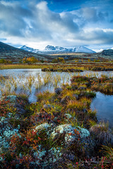 Rondane National Park, Norway (B.AA.S.) Tags: rondane rondanenationalpark norway norge nature natur hedmark water autumn autumnphotography autumncolors landscape landskap lake snow morning mountain