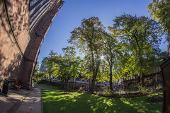 Cathedral Garden (8mm & Other Stuff) Tags: 8mm chestercathedral chester england canon fisheye uk gb trees sunlight 600d