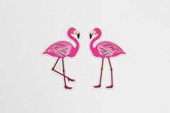 Flamingo couple (wuestenigel) Tags: couple flamingo animal pink outside studio whitebackground nature illustration desktop vector vektor sketch skizzieren design symbol graphic grafik art kunst image bild abstract abstrakt decoration dekoration shape gestalten beautiful schön confection konfekt color farbe card karte cute niedlich funny komisch element character charakter