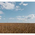 mille quatre cents hectares thumbnail