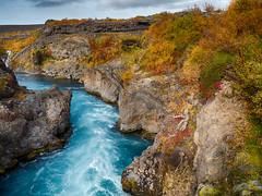 Barnafoss, Iceland (Jay-Aitch) Tags: barnafoss iceland water waterfall bjarnafoss hraunfossar hvita lumix g vario 14140f3556 panasonic gx9 nordic scenery