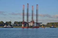 Multratug 16,  Multratug 5, Seafox 2, RPA 12, Fairplay 1  en Fairplay 3 (Hugo Sluimer) Tags: hetscheur scheur waterweg portofrotterdam port haven onzehaven nlrtm zuidholland holland nederland