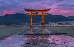 The great Torii (2/2) [JP] (ta92310) Tags: travel spring 2018 world japan japon hiroshima miyajima bluehour light longexposure asia asie itsukushima island ile