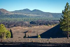 """New"" Lava (San Francisco Gal) Tags: lassenvolcanicnationalpark fantasticlavabeds painteddunes lava tree mountain cindercone"