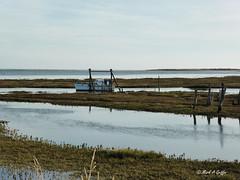 Tide is turning (mark.griffin52) Tags: england norfolk thornham countryside boats landscape water hightide saltmarsh creek marsh