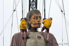 Getting ready for a drink (James O'Hanlon) Tags: giants giant liverpool spectacular liverpoolspectacular liverpoolsdream dream liverpools 3 3giants threegiants new brighton newbrighton wirral beach fortperchrock royal de luxe royaldeluxe jeanluc courcoult jeanluccourcoult dog walk drink
