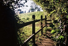 Footbridge over one of the Colliter's Brook streams (knautia) Tags: northsomerset england uk october 2018 film ishootfilm olympus xa2 olympusxa2 kodak ektar 100iso nxa2roll84 footpath collitersbrook brook stream