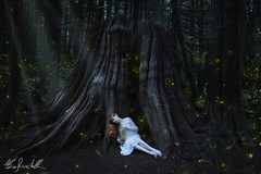Reserve of Light (Elis's ☾) Tags: painting dipinto natura nature forest woodland foresta wood bosco magic magia firefly lucciole photoshop manipulation beautiful meraviglia wonderful beauty dark darkness light girl redhead ginger redgirl redwoman notte evening goldenears fairy faerie fairytale fantasy fantastic trunk tronco albero tree portrait selfportrait skin pelle canon5dmark3 2470mm portfolio fineart art arte artistic opera color tone colorful conceptual concettuale britishcolumbia adventure canada