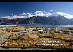 Meerak village and Pangong Lake in autumn color, Ladakh, India (jitenshaman) Tags: travel worldtravel destination destinations asia asian india indian ladakh ladakhi landscape landscapes mountain nature outdoors mountains lake lakes changthang blue deep alpine clouds cloudy weather highaltitude scenic touristattraction sightseeing gem deepblue pangong pangonglake nubra water still serene paradise meerak fall autumn merak autumncolors fallcolors colours colorful colourful gold golden trees changeofseason seasons autumnal