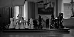 Schack (lena.fredin) Tags: fs181014 spel fotosöndag