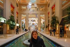 40283-Las-Vegas (xiquinhosilva) Tags: 2010 lasvegas nevada sands usa venetian unitedstates us