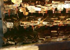 Reflected wishes (DameBoudicca) Tags: tokyo tokio 東京 japan nippon nihon 日本 temple tempel tempio templo yushimaseidō yushimaseido 湯島聖堂 confucian confucius templeofconfucius confuciantemple konfuziustempel konfuzius templeconfucéen templedeconfucius 孔子廟 ema 絵馬 えま prayer wish bön önskan gebet preghiera orazione oración prière 祈り いのり wunsch souhait deseo desiderio 願い ねがい reflection spegling reflektion reflet reflejo 反映 happyplanet asiafavorites