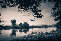 River - 11 Oct 2018 - 22.jpg (ibriphotos) Tags: autumn grey river cloud trees stirling riverforth dreich stirlingcastle weather leaves gray cloudappreciation cloudporn clouds skyporn