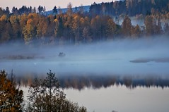 Morning landscape (Stefano Rugolo) Tags: stefanorugolo pentax k5 smcpentaxm100mmf28 pentaxk5 ricohimaging landscape nature morning fog mist water trees autumn forest reflections sweden sverige hälsingland lake peaceful tranquil serene