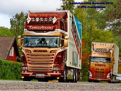 IMG_1661 LBT_Ramsele_2018 pstruckphotos (PS-Truckphotos #pstruckphotos) Tags: pstruckphotos pstruckphotos2018 lastbilsträffen lastbilsträffenramsele2018 samuelssons truckpics truckphotos lkwfotos truckkphotography truckphotographer truckspotter truckspotting lastwagenbilder lastwagenfotos berthons lbtramsele lastbilstraffenramsele lastbilsträffenramsele truckmeet truckshow ramsele sweden sverige