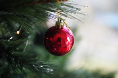 Christmas is Coming (Iker Merodio   Photography) Tags: winter ball red christmas gabonak tree pentax k50 sigma 30mm art begona bilbao bizkaia biscay basque country euskadi