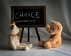 Choice (HTBT) (13skies (Cast off, brace on. Healed but still sore) Tags: htbt teddybeartuesday sonyalpha99 fun words barelyunbearablebears bears teddy huntley choice joyce tuesday chalk board understanding happyteddybeartuesday windowlight sony
