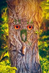 got ya (mAndersPhotos) Tags: fantasy photoshop lightroom digiart art tree owl surreal foto fotografie photo photogrphie composing composit wood mouce