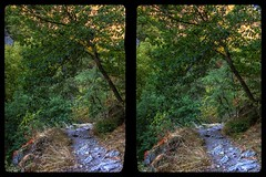 Bode valley path 3-D / CrossView / Stereoscopy / HDR / Raw (Stereotron) Tags: bodetal treseburg thale sachsenanhalt saxonyanhalt ostfalen harz mountains gebirge ostfalia hardt hart hercynia harzgau deutschland germany europe cross eye view xview crosseye pair free sidebyside sbs kreuzblick bildpaar 3d photo image stereo spatial stereophoto stereophotography stereoscopic stereoscopy stereotron threedimensional stereoview stereophotomaker photography picture raumbild twin canon eos 550d remote control synchron kitlens 1855mm 100v10f tonemapping hdr hdri raw availablelight