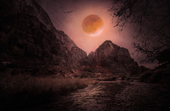 Red Moon Rising - Textured (byron bauer) Tags: byronbauer blood moon sky cloud zion virginriver nationalpark painterly texture owl halloween water reflection reeds grass rock cliff mountain branches tree allhalloweven