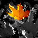 Gerald_CagleAssn6 thumbnail