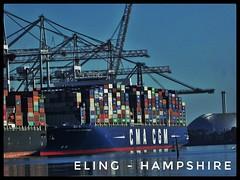 #Eling - #Hampshire (Mrfto73) Tags: eling hampshire swans