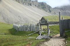 2Q8A2221 (marcella falbo) Tags: höfn iceland horn hornsvík vikingvillage vikingr