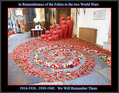 Tribute to the Fallen .. (** Janets Photos **) Tags: uk hull hullminster worldwars artworks remembrance poppies