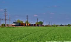 E633 111 (MattiaDeambrogio) Tags: e633 tigre 111 seconda serie trenitalia cargo xmpr mercitalia rail pontecurone milano genova milanogenova nikon d3300 18200 tamron