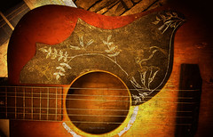 Acoustic Guitar (Trippin' TIki) Tags: guitar music musical instrument acoustic hummingbird gibson flattop wood
