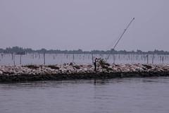 il pescatore (paolotrapella) Tags: fishermen laguna italia