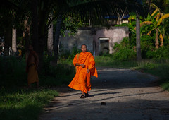 Cambodian monk walking in the street, Battambang province, Battambang, Cambodia (Eric Lafforgue) Tags: asia asian buddhism buddhist cambodia clergy colourimage cultures developingcountries horizontal indochina lookingatcamera man men monk oneadultonly onemanonly oneperson orange people religion religious robe saffron spirituality traditionalclothing camboimg0747 battambang battambangprovince