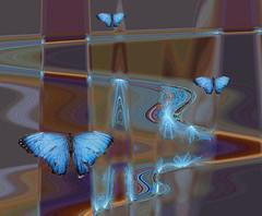Where butterflies roam (ashokboghani) Tags: butterfly abstract abstractart digitalart digitalpainting photoshop photoshopart modernart