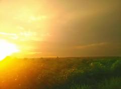 """Shine"" #shine #sun #country #love #sky #light #lights # burn #love #life #wanderlust #style #sunset #sunsets #sundown (daisynguyen2289) Tags: sundown light love country sunsets wanderlust style shine sun sky sunset life lights"