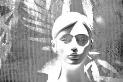 without (Olivier Simard Photographie) Tags: bâle basel femme vitrine visage noiretblanc étude regard yeux