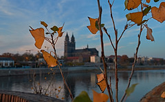 Herbst in der Stadt ~ Autumn in the City (Froschkönig Photos) Tags: herbst der stadt ~ autumn city magdeburg dom elbe canoneos70d efs18135 hubbrücke stadtpark rothehorn wsmmalanders