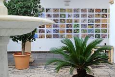 FOTO_Ambiente y estands Intercaza jueves_23 (Página oficial de la Diputación de Córdoba) Tags: intercaza diputación córdoba dipucordoba ambiente feria 2018 estands cinegética ocio activo medio desarrollo económico sostenible