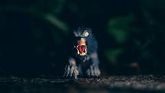 Keep clear of the moors. (3rd-Rate Photography) Tags: anamericanwerewolfinlondon werewolf horror funko mysteryminis blindbox toy toyphotography october halloween canon macro 100mm 5dmarkiii jacksonville florida 3rdratephotography earlware 365
