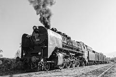 DSC_6181 (Rivo 23) Tags: bdz bulgarian state railways steam locomotive 0123 dampflok world war 2 event reconstruction ww2 battle bulgaria germany historic 1944 september операция девебаир гюешево втора световна война битка парен локомотив влак българска войска