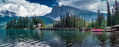 Emerald Lake in Panoramic View, Yoho National Park, Canada (YL168) Tags: flickrunitedaward sonyemount yohonationalpark lake greatphotographers greaterphotographers