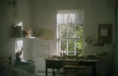 34 (kwokts) Tags: portra portra160 kodak minolta film analogue 35mm greenpoint brooklyn