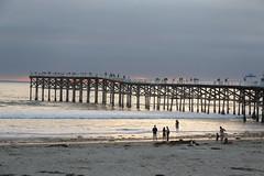 Ocean Beach Pier (raffaele pagani) Tags: oceanbeachsandiego ob sandiego calofornia unitedstates spiaggia mare oceano oceanopacifico pacificocean canon