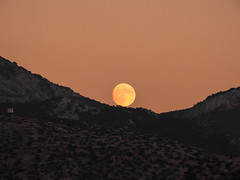 like a rolling stone (athanecon) Tags: moon fullmoon almostfullmoon fireball rollingstone ymittos greece nikon coolpix coolpixp900 nikoncoolpixp900 mountain trees sky alimosview