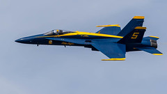The Blue Angels Hornet (Fly By Photography) Tags: 1634625cn0683c027 blueangels cherrypointmcascunninghamfieldnktknkt fortus lttylerfeedbagdavies5leadsolo mcascherrypointairshow2018 mcdonnelldouglasfa18chornet navyusnavy northcarolina usnavyflightdemonstrationsquadron airshow aviation aviator blue courage defense display excitement extreme fast fighter flying honor modern patriotism performance pilot plane planes power precision professional havelock unitedstates