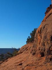 P6300150 (carriemoranphotos) Tags: arizona sedona redrocks trees travel sunrise sunset red usa roadtrip